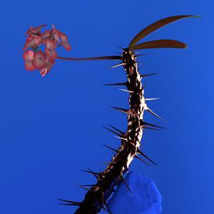 ฟังเพลงใหม่อัลบั้ม Skin Companion EP II