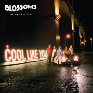 ฟังเพลงใหม่อัลบั้ม Cool Like You