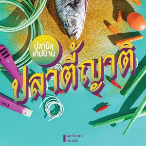 ฟังเพลงใหม่อัลบั้ม ปลาตี้ญาติ