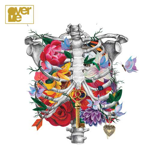 ฟังเพลงใหม่อัลบั้ม Anatomy