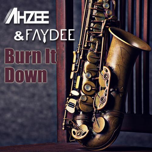 ฟังเพลงใหม่อัลบั้ม Burn It Down