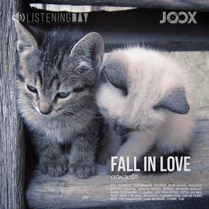 ฟังเพลงต่อเนื่อง FALL IN LOVE ตกหลุมรัก