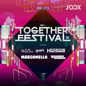 ฟังเพลงต่อเนื่อง Together Festival 2018