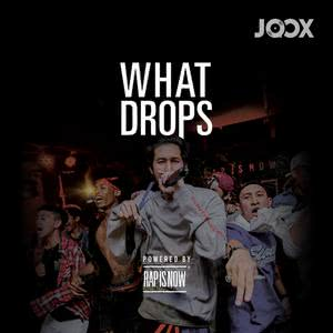 WHAT DROPS