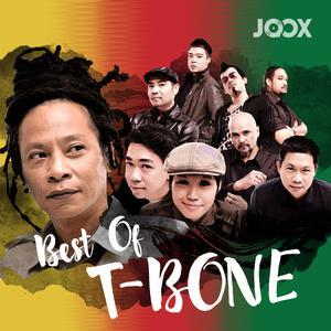 ฟังเพลงต่อเนื่อง Best of T-Bone