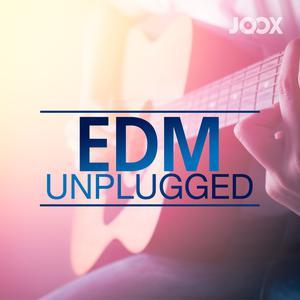 ฟังเพลงต่อเนื่อง EDM Unplugged