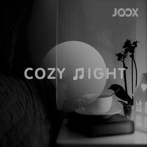Cozy Night