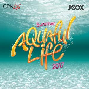 ฟังเพลงต่อเนื่อง Summer Aquaful Life 2017