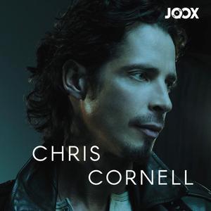 ฟังเพลงต่อเนื่อง RIP Chris Cornell